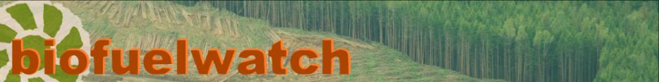biofuel-watch