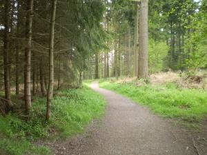 mortimer path